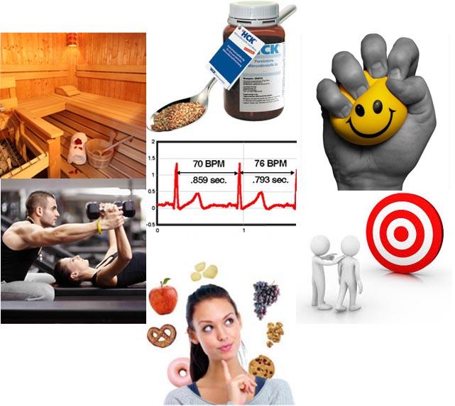 gezondheid, energie en gewicht plan