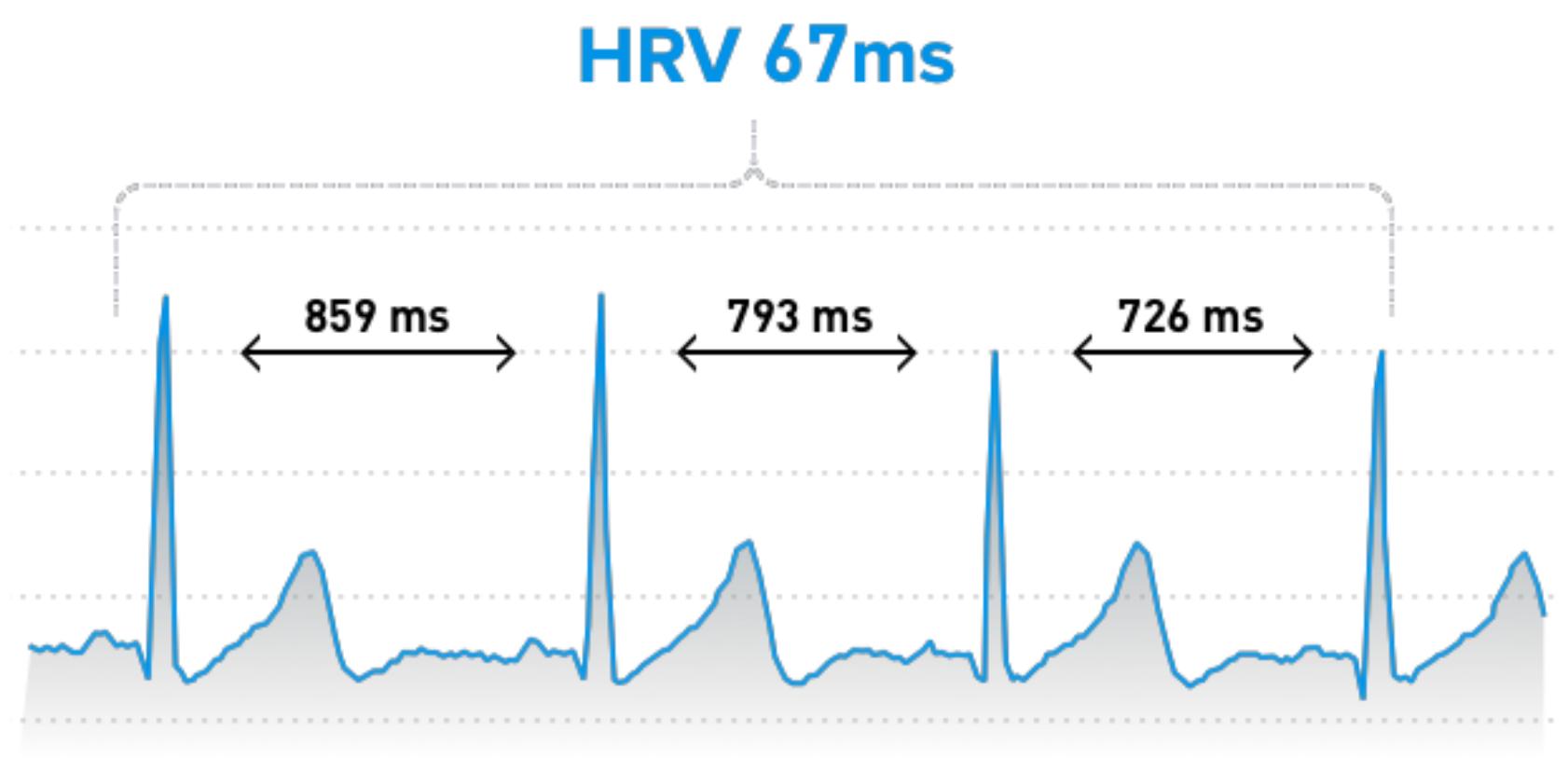 HRV meting